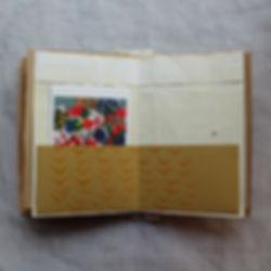 Book 7 small.jpg