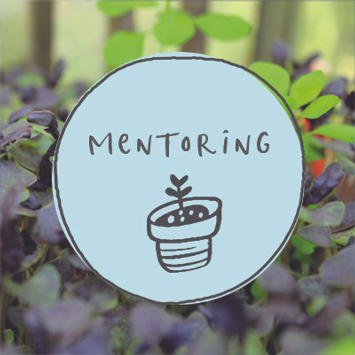 Mentoring - In depth session