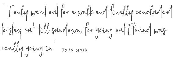 John-Muir.png