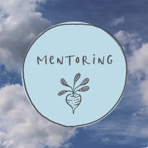 Mentoring - single session
