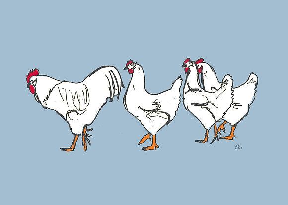 Hühnerreihe Blau