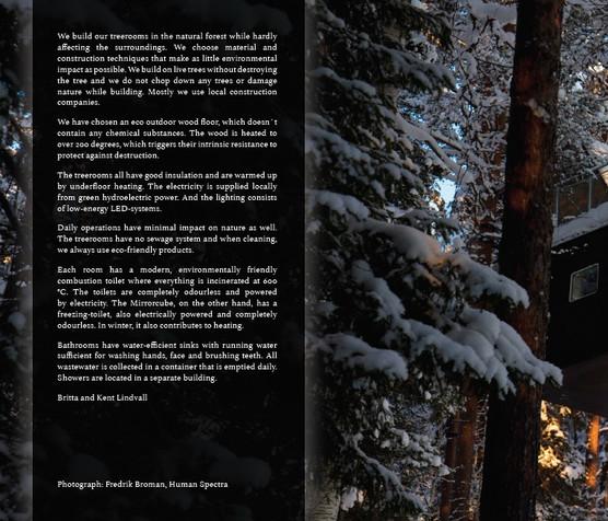 treeplay6.jpg