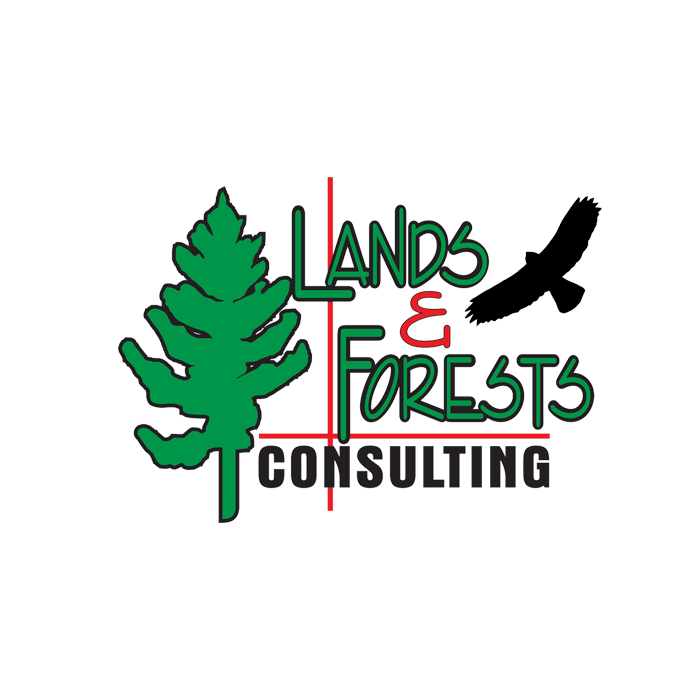 Aerial Imagery | Lands & Forests Consulting | Ontario