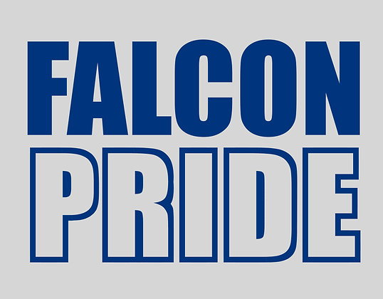 FALCON PRIDE SHIRTS, LONG SLEEVE & SWEATSHIRTS