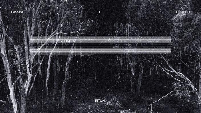Alive/Opaque