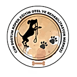 CAN DOSTUM LOGO.png