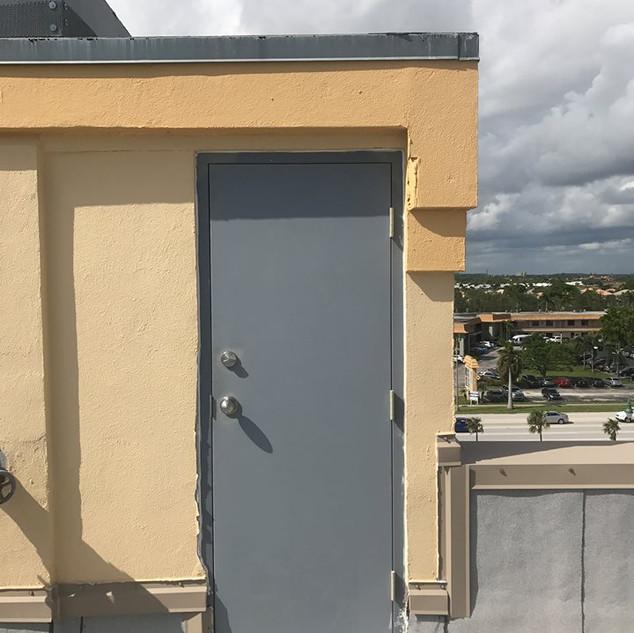 Roof door
