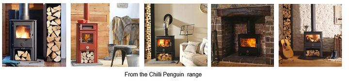 chilli penguin.jpg