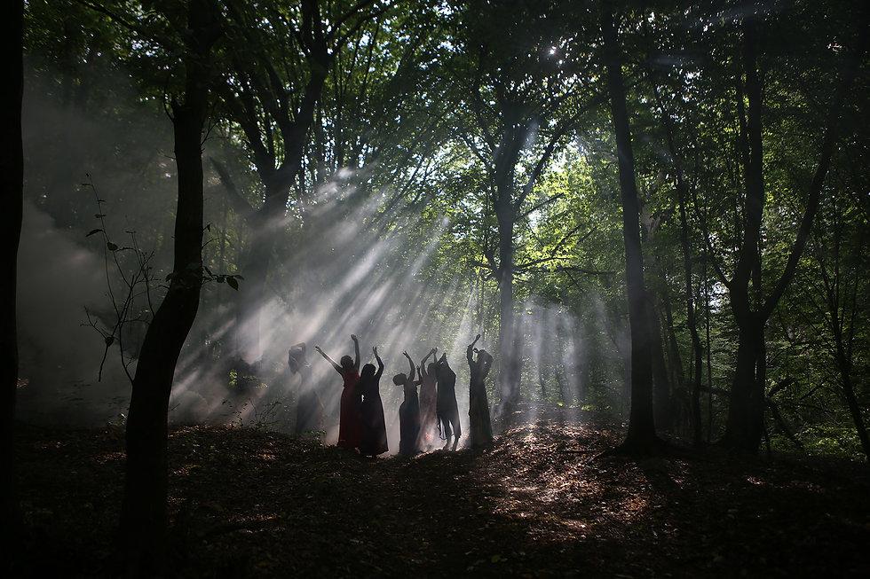 witchofthewoods.jpg