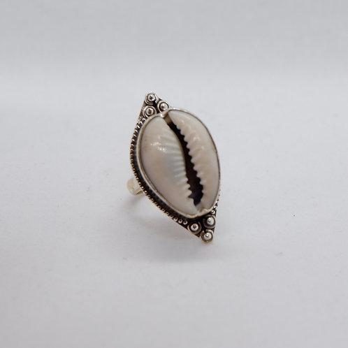 Cowry ring 1