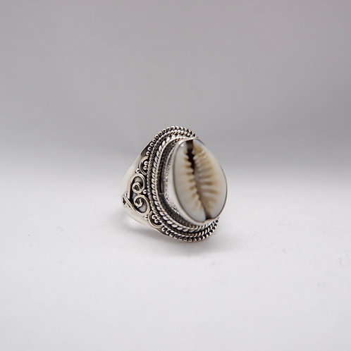 Cowry ring 4
