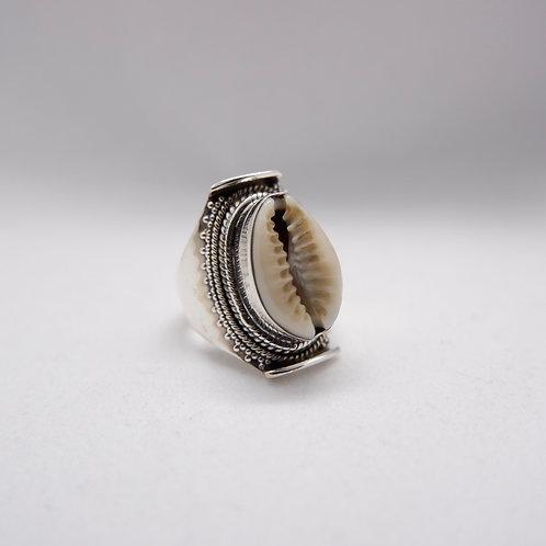Cowry ring 5