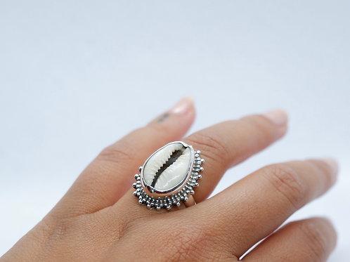 Cowry ring 3