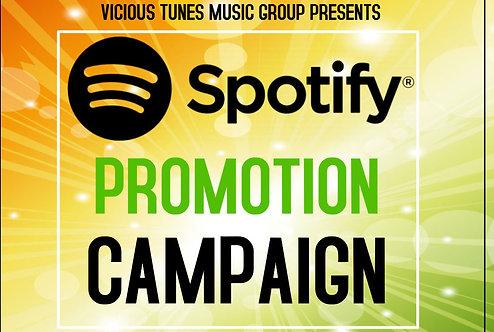 Spotify Promo Campaign