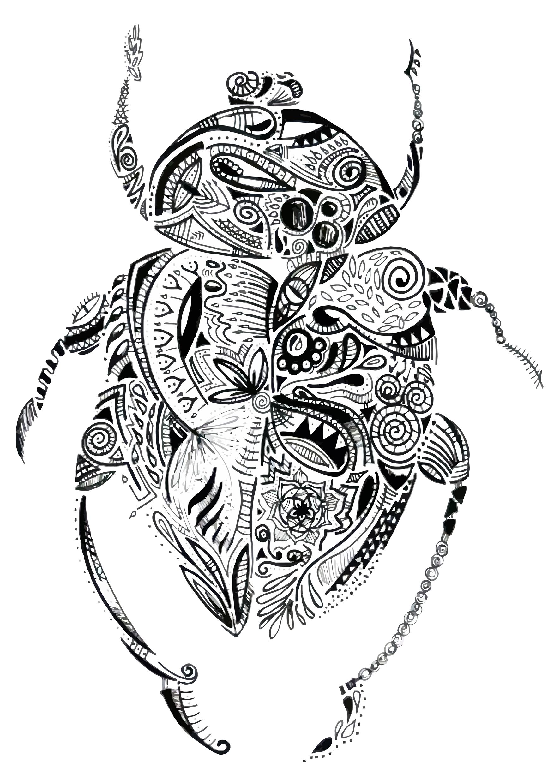 Escaravelho Maori