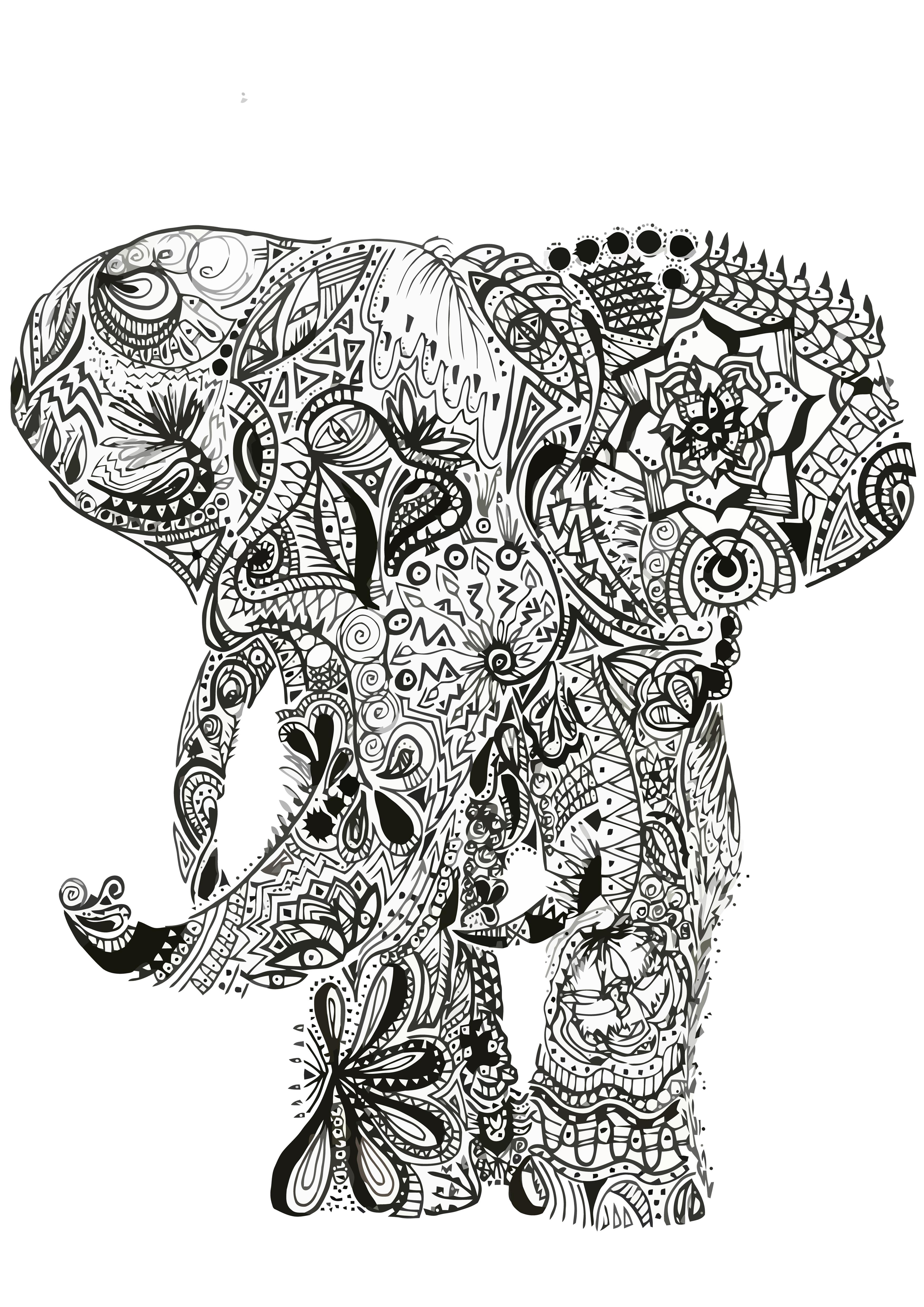 Elefante Maori