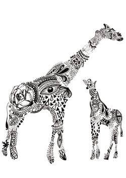 Girafas Maori