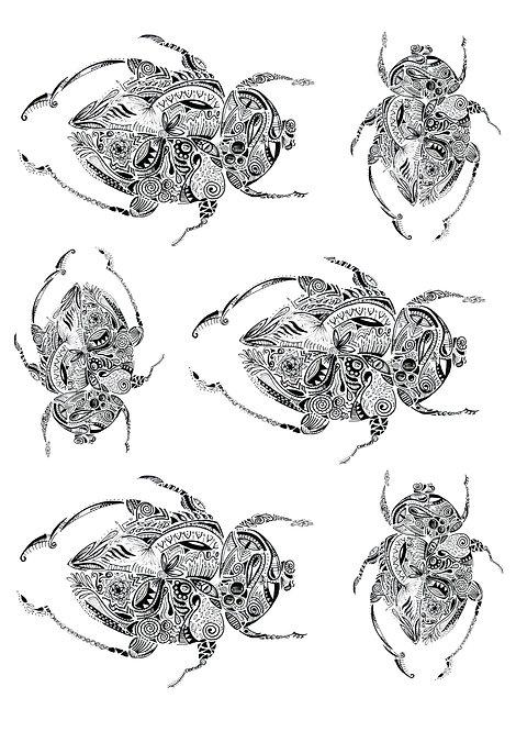 Escaravelhos Maori