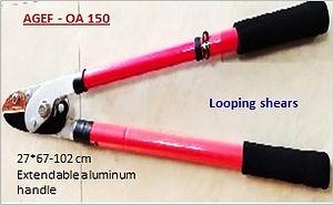 AGEF - OA 150.jpg
