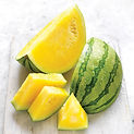 Hybrid Watermelon Champaigne F1  بطيخ أص