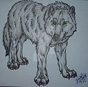 dire wolf  image to paint.jpg