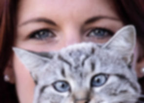 ludivine aider, coach intuitif, Tours, Blois, communication animale, bien-etre animal, chat, chien, chevaux, cheval, équitation, magnetiseur, regard, yeux bleus, siamois,