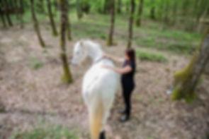 ludivine aider, coach intuitif, Tours, Blois, communication animale, bien-etre animal, chat, chien, chevaux, cheval, équitation, magnetiseur, decontraction, horse, dog, cats