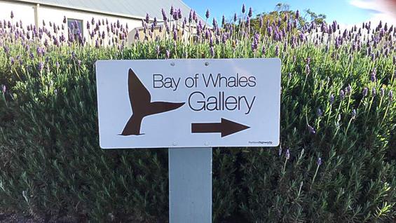 Bay of Whales Gallery, Farm & Garden
