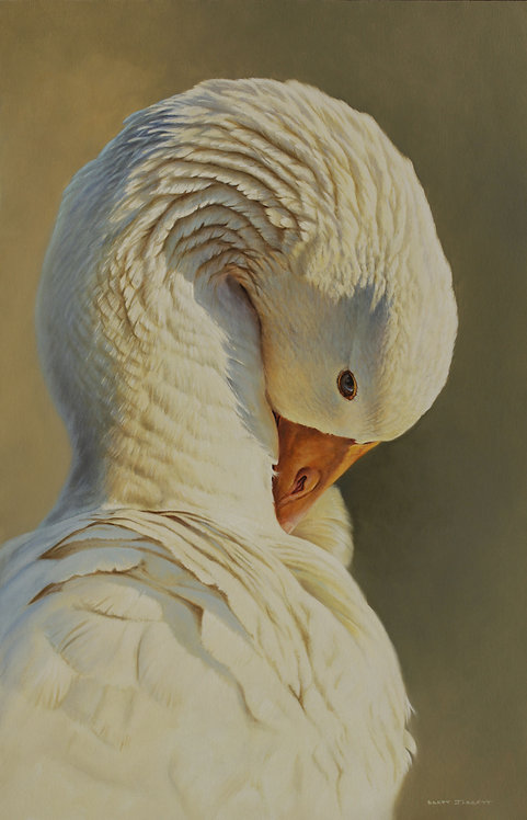 'Peaceful' White Goose