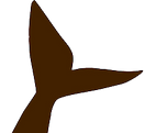 BOWG Favicon PNG.png