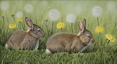 Baby Rabbits 37 x 21 cm mammals.JPG