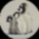 1. PNG RND 'Companions' Emperor Penguin