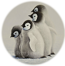 1. PNG RND 'Companions' Emperor Penguin