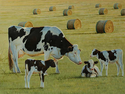 'Spring Time' Friesian Cow and Calves