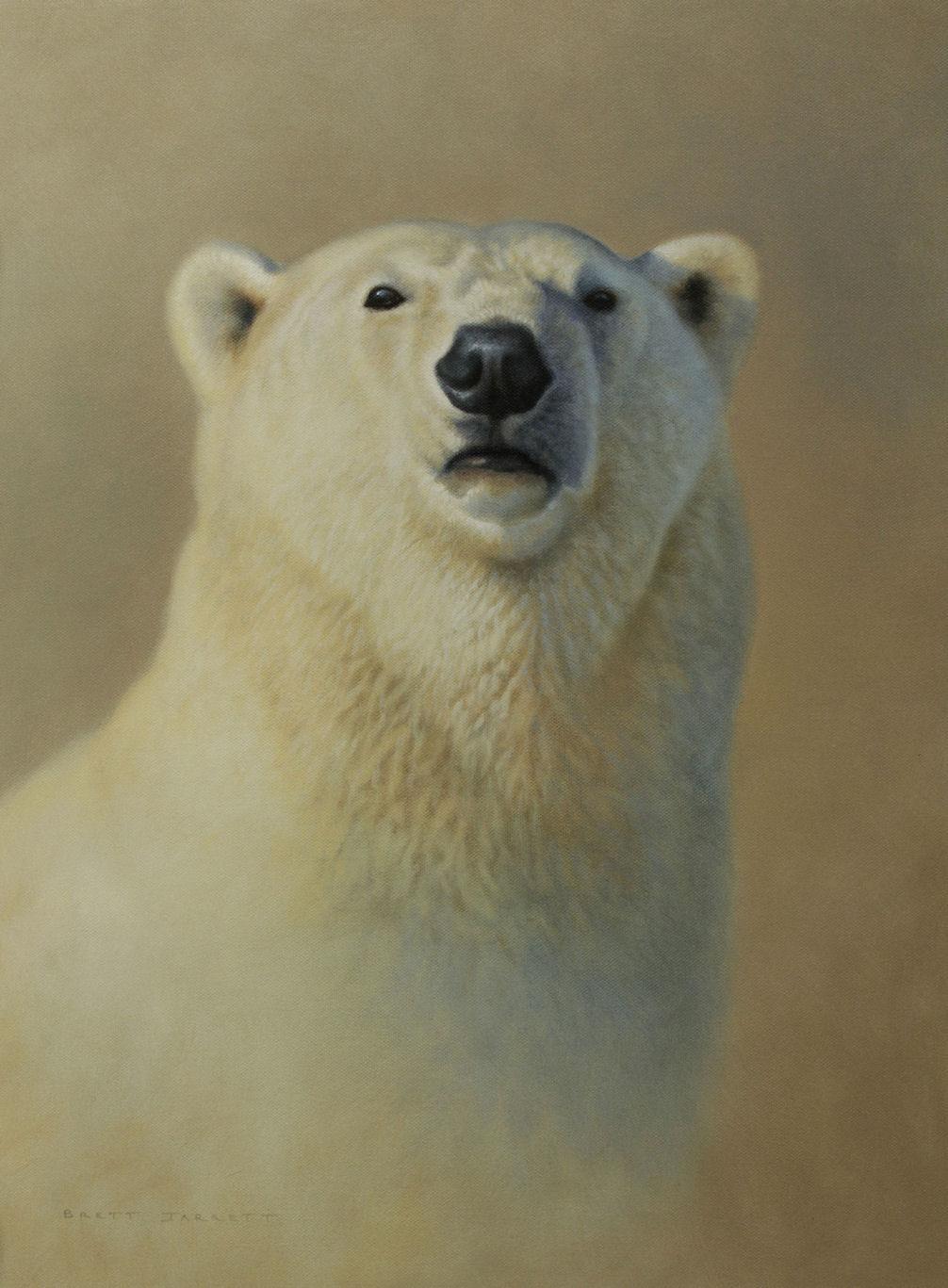 'Imposing Presence' Polar Bear 45 h x 32