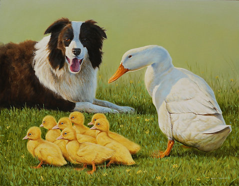Dogs, Ducks and Dandelions