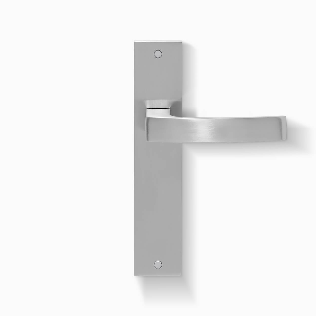 Calais Privacy Lever on Plate.jpg