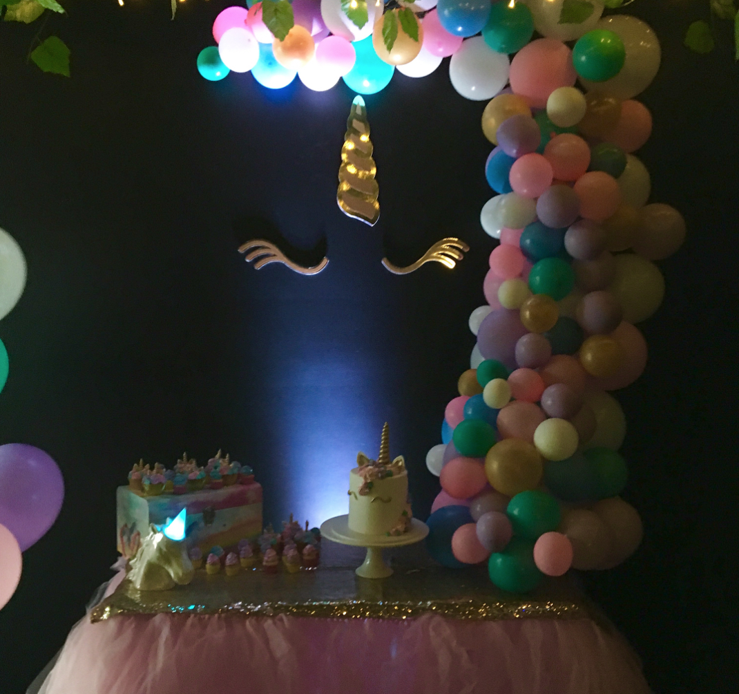 Unicorn Party 3