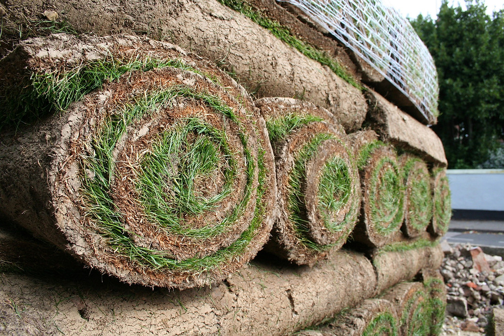 rolls of sod for planting at cedarwood coop
