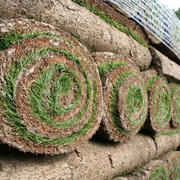 New Jersey Sod Store