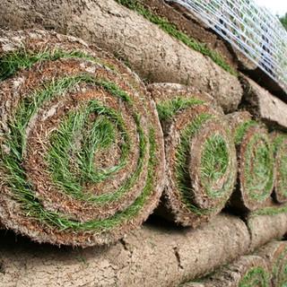 Re-turfing or seeding