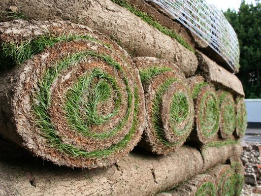 O plantio de grama garante um jardim bem cuidado e bonito