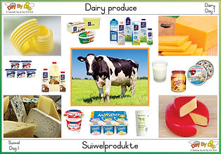 dairy day 1.jpg