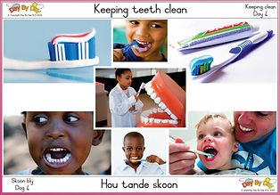 Keeping teeth clean.jpg