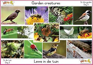 Garden creatures.jpg