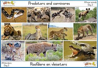 Predators and carnivores.jpg