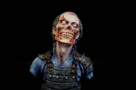Curse Of Zombie