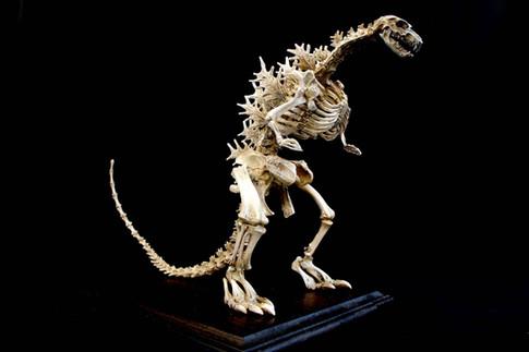 Godzilla Skeleton