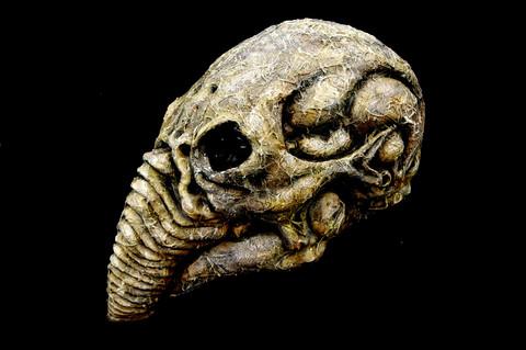 Prometheus Decayed Bio-Helmet