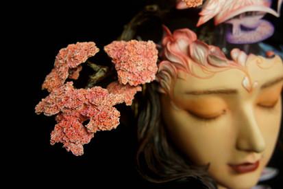 春芒、桃花島 Peach Blossom Island